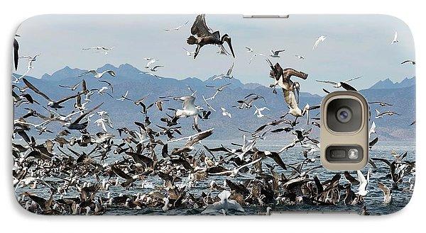 Seabirds Feeding Galaxy Case by Christopher Swann