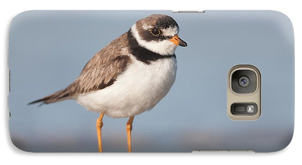 Semipalmated Plover Galaxy Case by Clarence Holmes