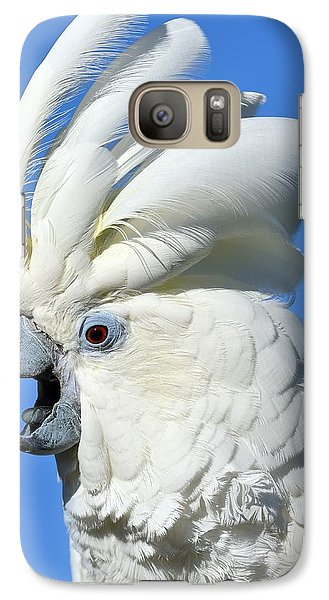 Shady Umbrella Galaxy S7 Case by Tony Beck