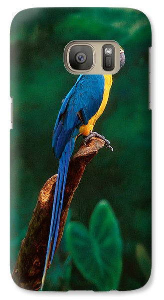 Singapore Macaw At Jurong Bird Park  Galaxy Case by Anonymous