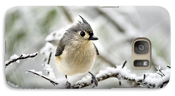 Snowy Tufted Titmouse Galaxy S7 Case by Christina Rollo