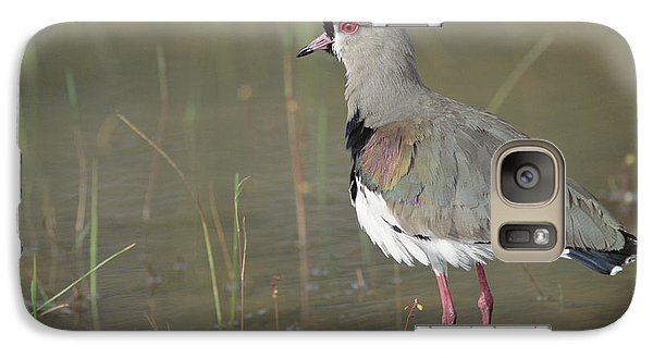 Southern Lapwing In Marshland Pantanal Galaxy Case by Tui De Roy