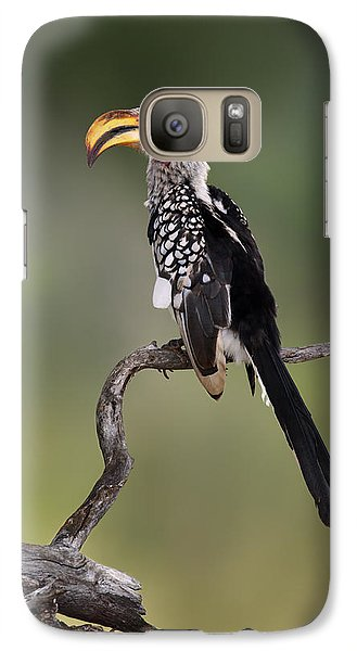Southern Yellowbilled Hornbill Galaxy S7 Case by Johan Swanepoel