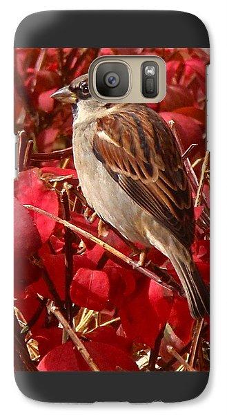 Sparrow Galaxy Case by Rona Black