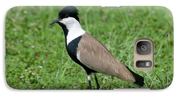 Spur-winged Plover Galaxy S7 Case by Nigel Downer