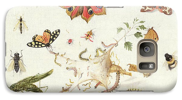 Study Of Insects And Flowers Galaxy Case by Ferdinand van Kessel