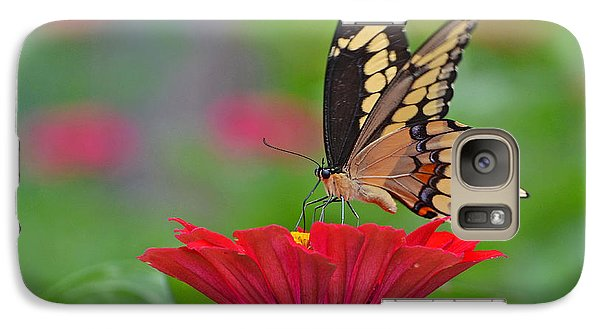 Galaxy Case featuring the photograph Swallowtail On A Zinnia by Rodney Campbell