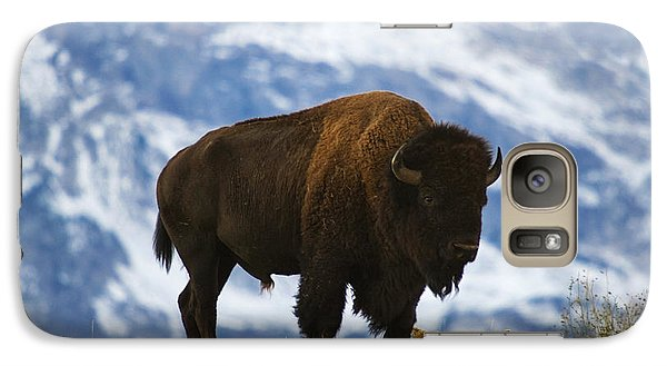 Teton Bison Galaxy Case by Mark Kiver