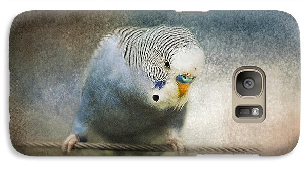 The Budgie Collection - Budgie 3 Galaxy S7 Case by Jai Johnson