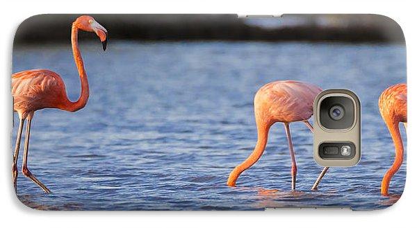 The Three Flamingos Galaxy Case by Adam Romanowicz