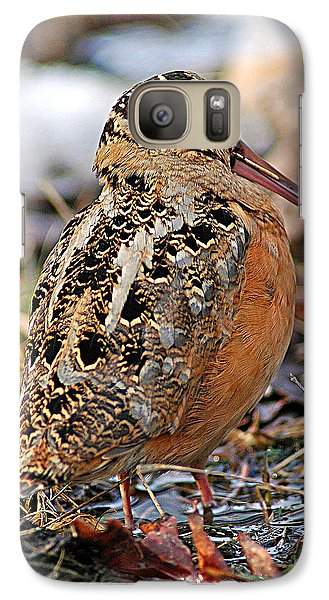 Timberdoodle The American Woodcock Galaxy S7 Case by Timothy Flanigan