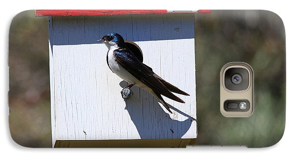 Tree Swallow Home Galaxy Case by Mike  Dawson
