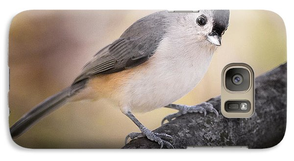 Tufted Titmouse Galaxy S7 Case by Bill Wakeley