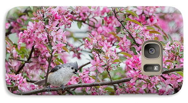 Tufted Titmouse In A Pear Tree Galaxy S7 Case by Bill Wakeley