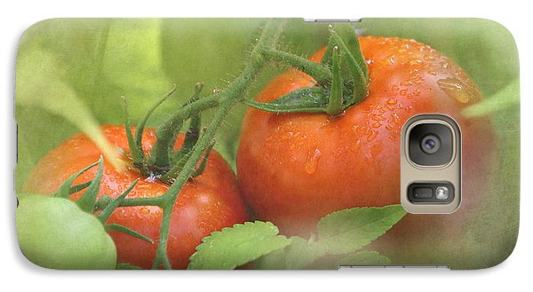 Vine Ripened Tomatoes Galaxy S7 Case by Angie Vogel
