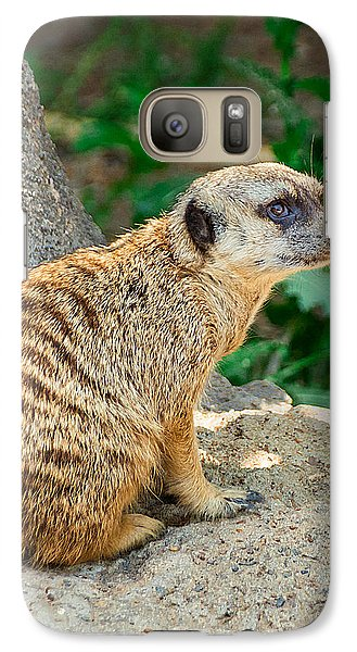 Watchful Meerkat Vertical Galaxy S7 Case by Jon Woodhams