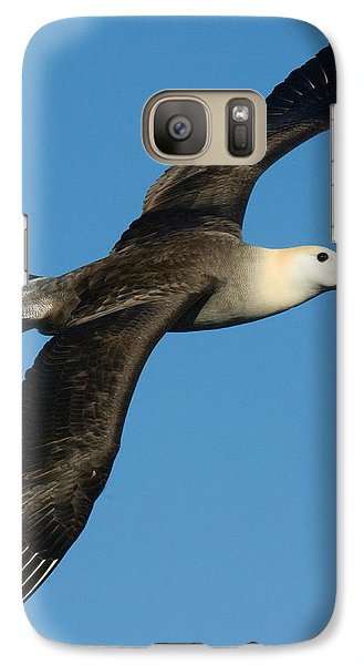Waved Albatross Diomedea Irrorata Galaxy S7 Case by Panoramic Images