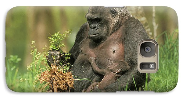 Western Gorilla And Young Galaxy Case by M. Watson