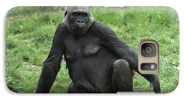 Western Lowland Gorilla Female Galaxy Case by Gerry Ellis