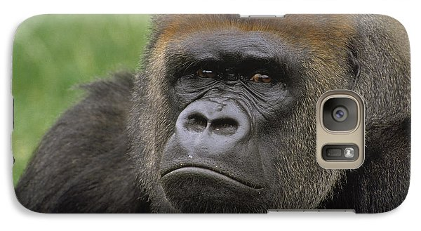 Western Lowland Gorilla Silverback Galaxy Case by Gerry Ellis