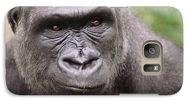 Western Lowland Gorilla Young Male Galaxy Case by Gerry Ellis