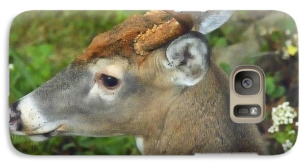 Galaxy Case featuring the photograph Whitetailed Deer Buck by A Gurmankin