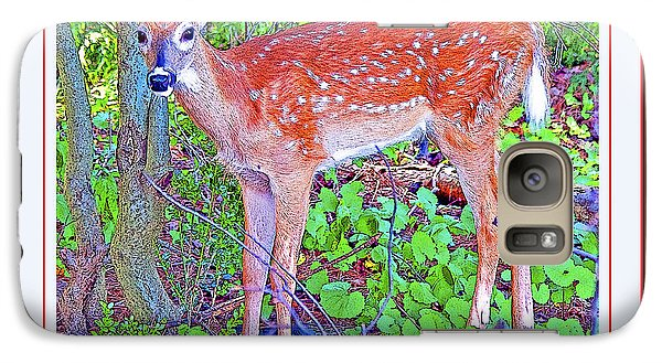 Galaxy Case featuring the photograph Whitetailed Deer Fawn In A Forest  by A Gurmankin