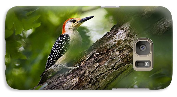 Red Bellied Woodpecker Galaxy S7 Case by Christina Rollo