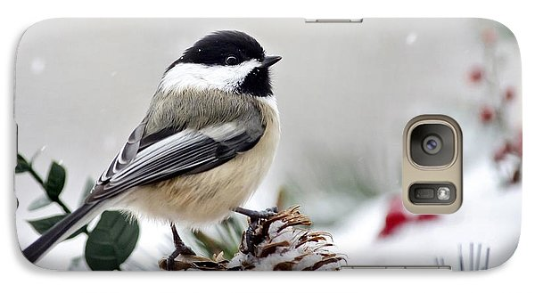 Winter Chickadee Galaxy Case by Christina Rollo