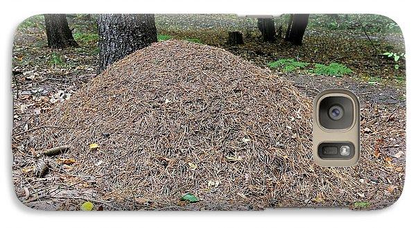 Wood Ant Nest Galaxy S7 Case by Bildagentur-online/mcphoto-schulz