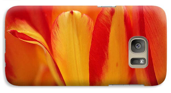 Yellow And Red Striped Tulips Galaxy Case by Rona Black