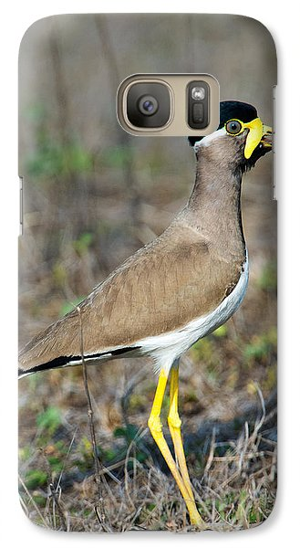 Yellow-wattled Lapwing Vanellus Galaxy S7 Case by Panoramic Images