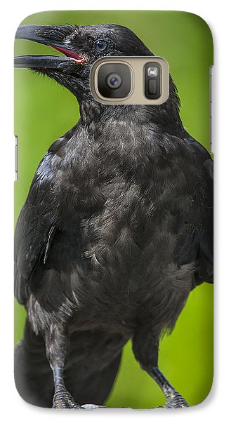 Young Raven Galaxy S7 Case by Tim Grams