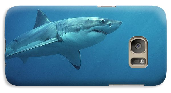 Great White Shark Carcharodon Galaxy Case by Mike Parry