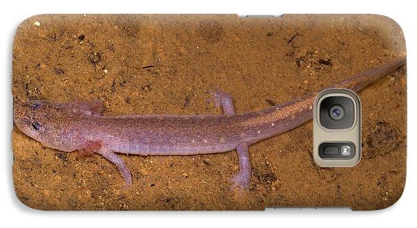 Ozark Blind Cave Salamander Galaxy Case by Dante Fenolio