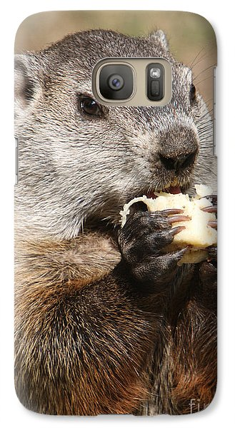 Animal - Woodchuck - Eating Galaxy S7 Case by Paul Ward