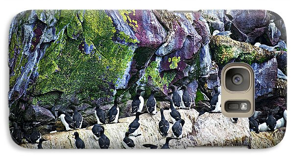Birds At Cape St. Mary's Bird Sanctuary In Newfoundland Galaxy Case by Elena Elisseeva