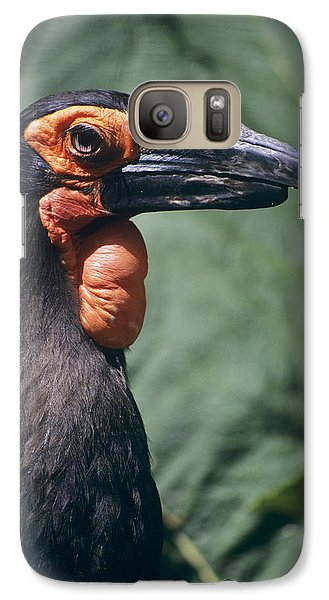 Ground Hornbill Head Galaxy S7 Case by David Aubrey