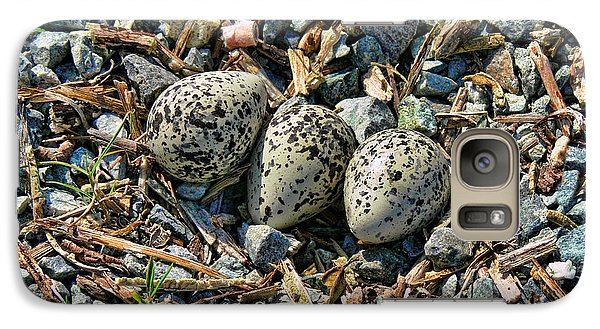 Killdeer Bird Eggs Galaxy Case by Jennie Marie Schell