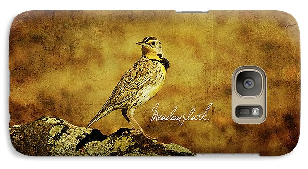 Meadowlark Galaxy Case by Lana Trussell