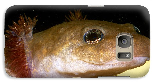 Pacific Giant Salamander Larva Galaxy Case by Dante Fenolio