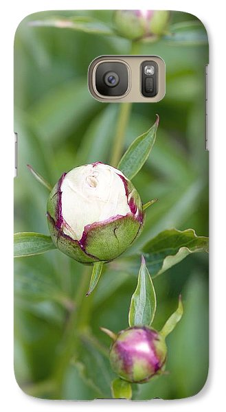 Paeonia Lactiflora 'shirley Temple' Galaxy S7 Case by Jon Stokes