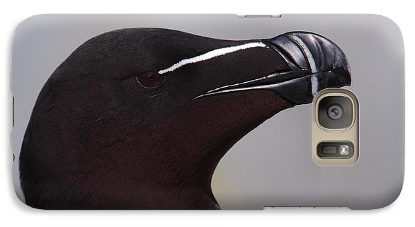 Razorbill Portrait Galaxy Case by Bruce J Robinson