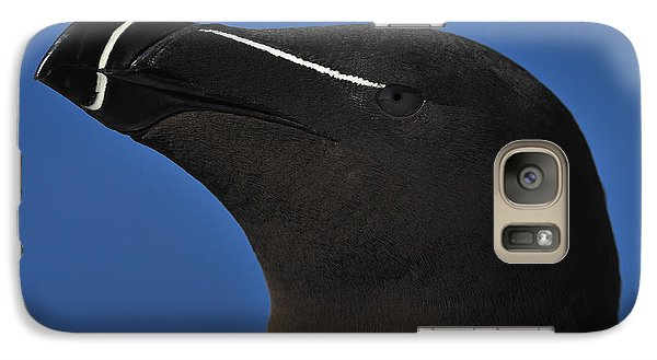 Razorbill Portrait Galaxy Case by Tony Beck