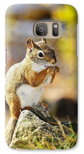 Red Squirrel Galaxy S7 Case by Elena Elisseeva