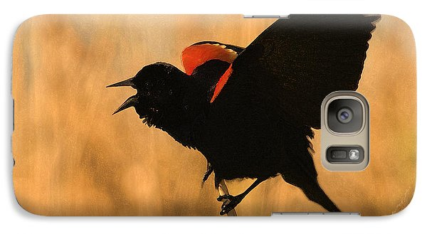 Singing At Sunset Galaxy S7 Case by Betty LaRue