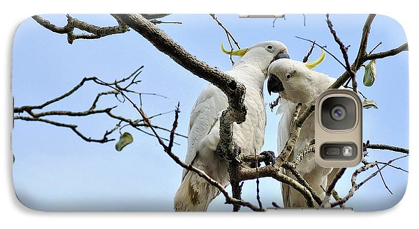 Sulphur Crested Cockatoos Galaxy Case by Kaye Menner