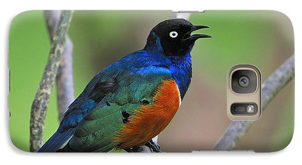 Superb Starling Galaxy Case by Tony Beck