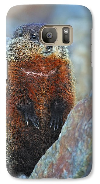 Woodchuck Galaxy S7 Case by Tony Beck