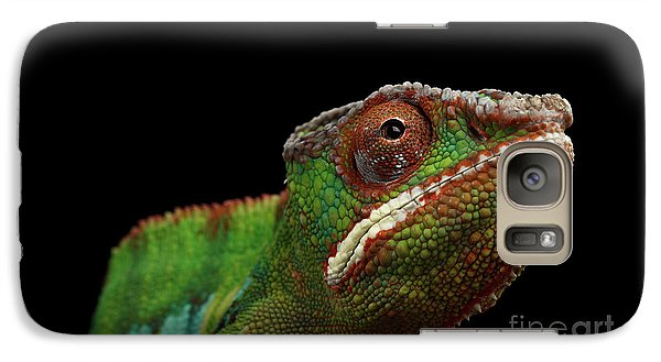 Closeup Head Of Panther Chameleon, Reptile In Profile View Isolated On Black Background Galaxy Case by Sergey Taran